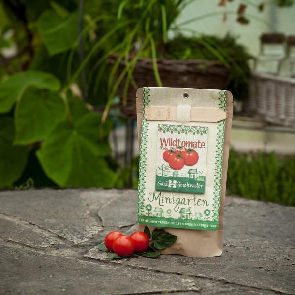 Minigarten Tomate