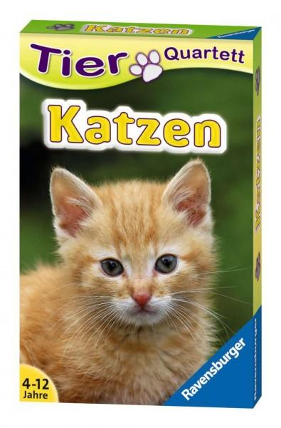 Tier Quartett Katzen