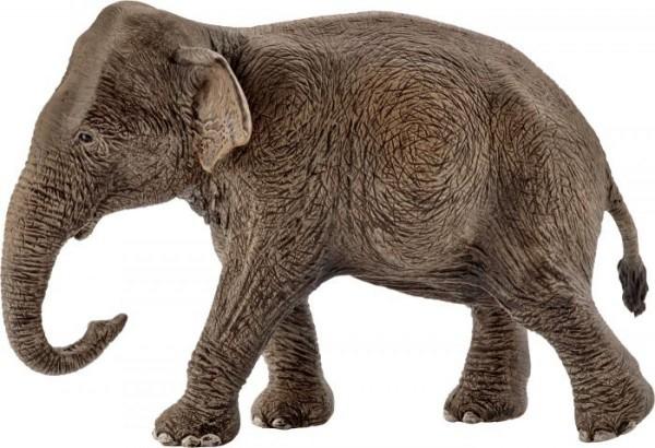 Schleich Wild Life 14753 Asiatische Elefantenkuh
