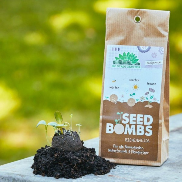 Seedbombs Bienenweide