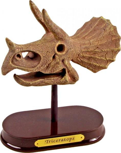 T-Rex World Ausgrabungsset Dinoschädel Triceratops