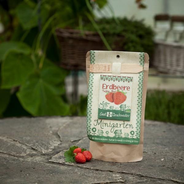 Minigarten Erdbeeren
