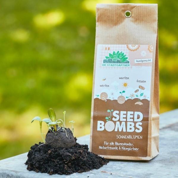 Seedbombs Sonnenblumen