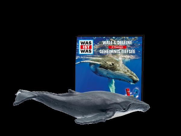 WAS IST WAS - Wale & Delfine/Geheimnisse Tiefsee
