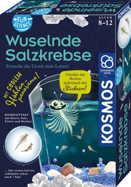 Fun Science Wuselnde Salzkrebse