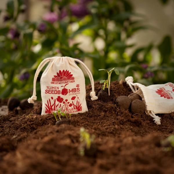 Seedbombs Blühendes Kornfeld