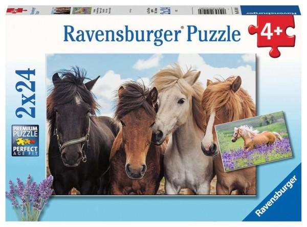 Pferdeliebe (2x24 Teile)